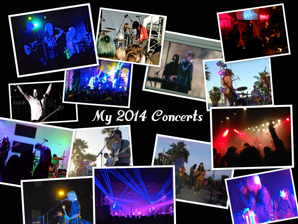 My 2014 year in Concerts 1