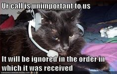 What Are Our Biggest Customer Service Gripes? 10